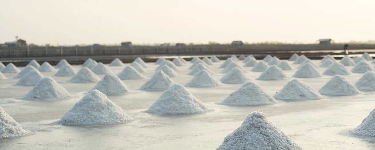 salt field